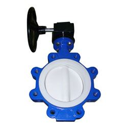 PTFE Butterfly Valves Exporters
