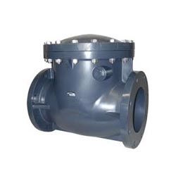 Thermoplastic Swing Check Valve Manufacturer